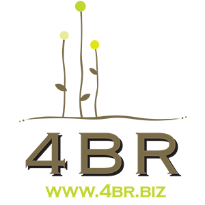 What is 4BR?